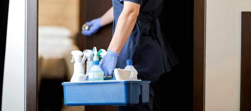 The Benefits of Choosing a Professional Maid Service